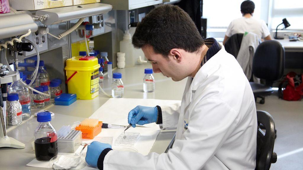 El Gobierno permite congresos científicos de 30 asistentes y abrir instalaciones científico-técnicas en fase 1