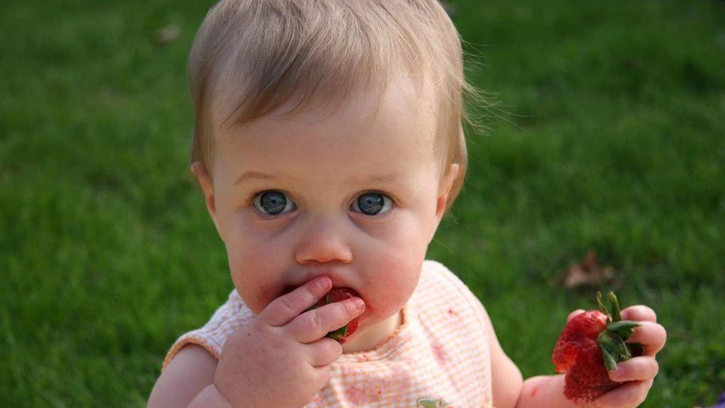 ¿A qué edad es aconsejable introducir alimentación complementaria a un bebé?