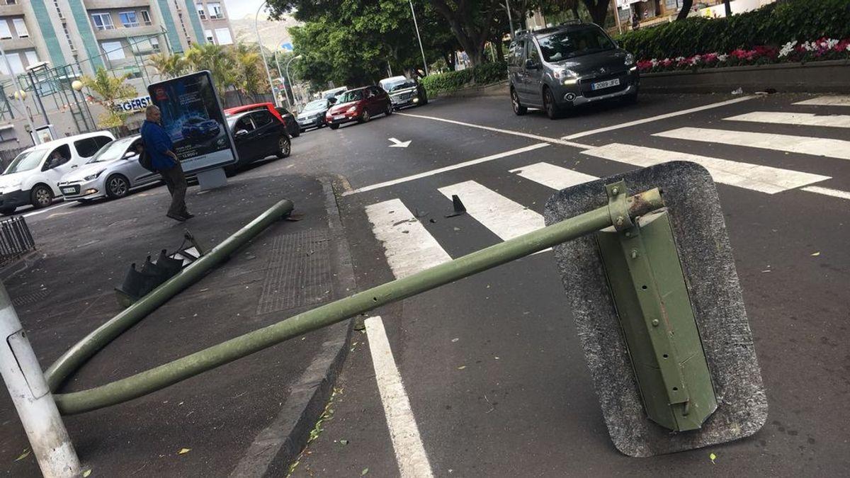 Herido un peatón al caerle encima un semáforo que había sido derribado por un turismo en Zaragoza