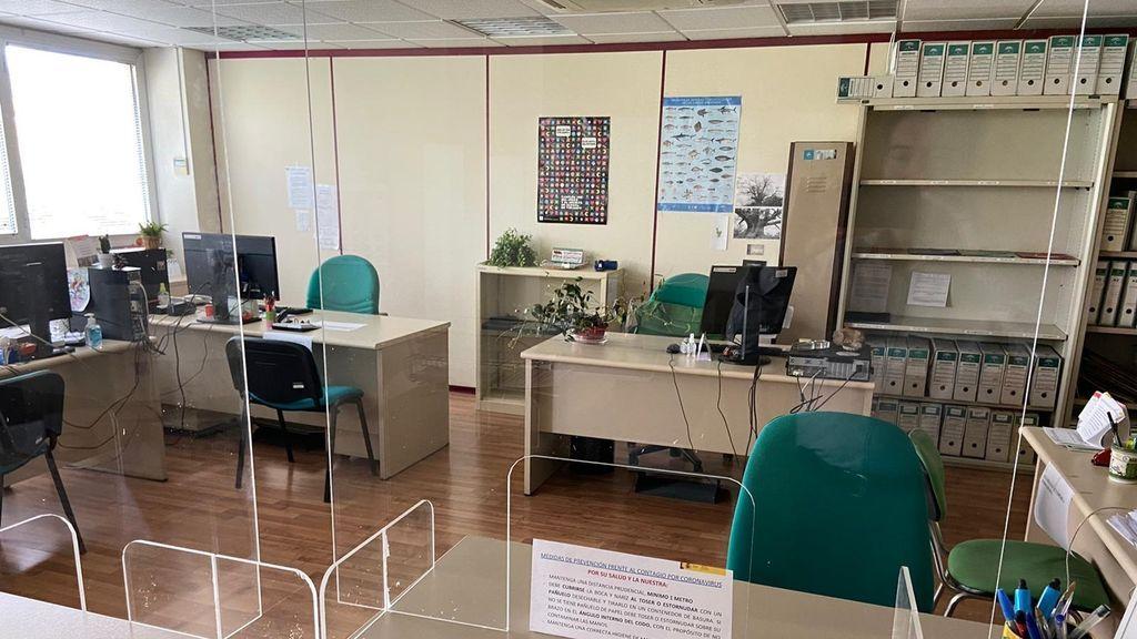 Arranca la vuelta al trabajo: oficinas al 50% de ocupación y nuevos horarios