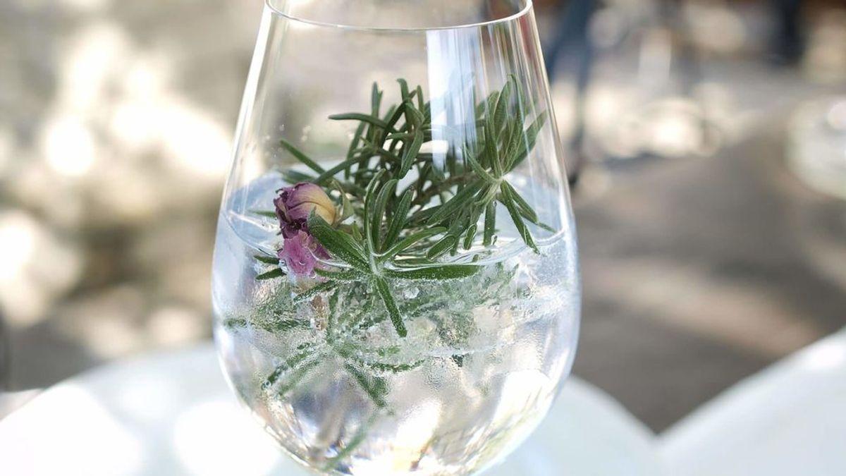Organiza catas de gin tonic en tu casa siguiendo estos sencillos pasos