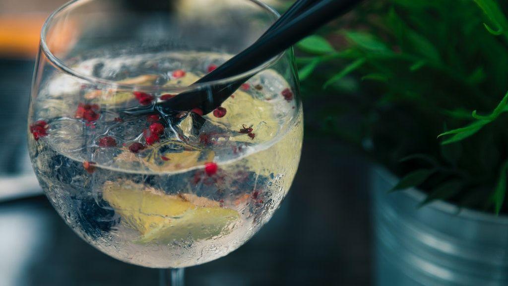 Independientemente de como te guste, 5 cosas que no deberías olvidar en tu gin tonic