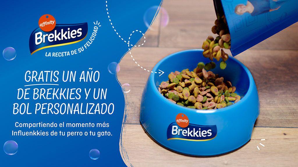 Con Brekkies, la foto de tu perro o gato puede tener premio: participa y gana un año de Brekkies gratis