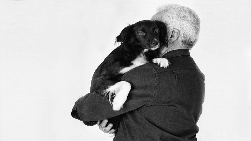 Perros de terapia, un buen aliado en la lucha contra el alzhéimer