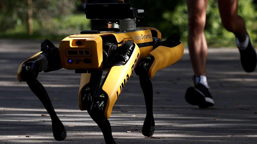 Perro robot en Singapur
