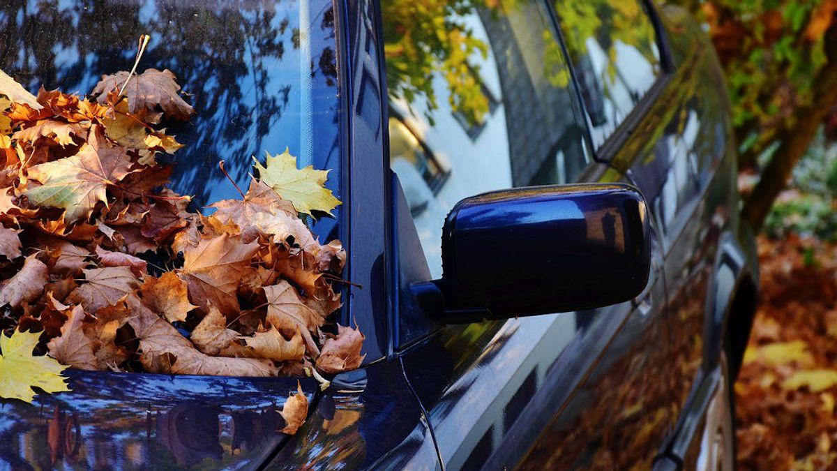Cómo recuperar el brillo de la pintura del coche tras dos meses parado y sucio