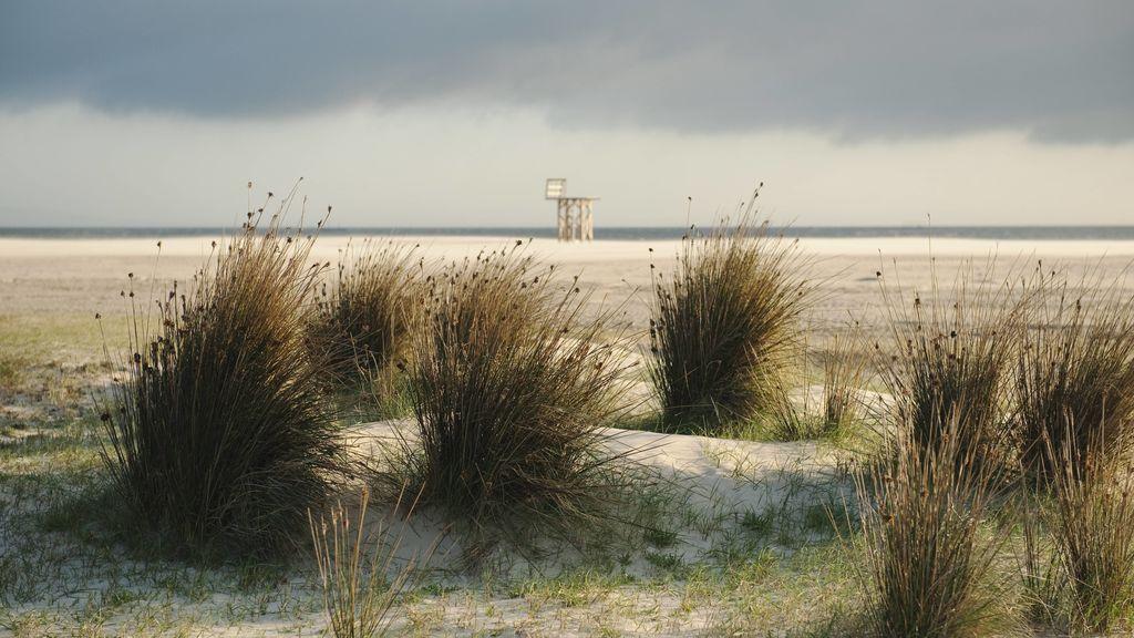 El viento va a más en el sur: aviso en Cádiz, Almería y Granada por rachas de 90 km/hora