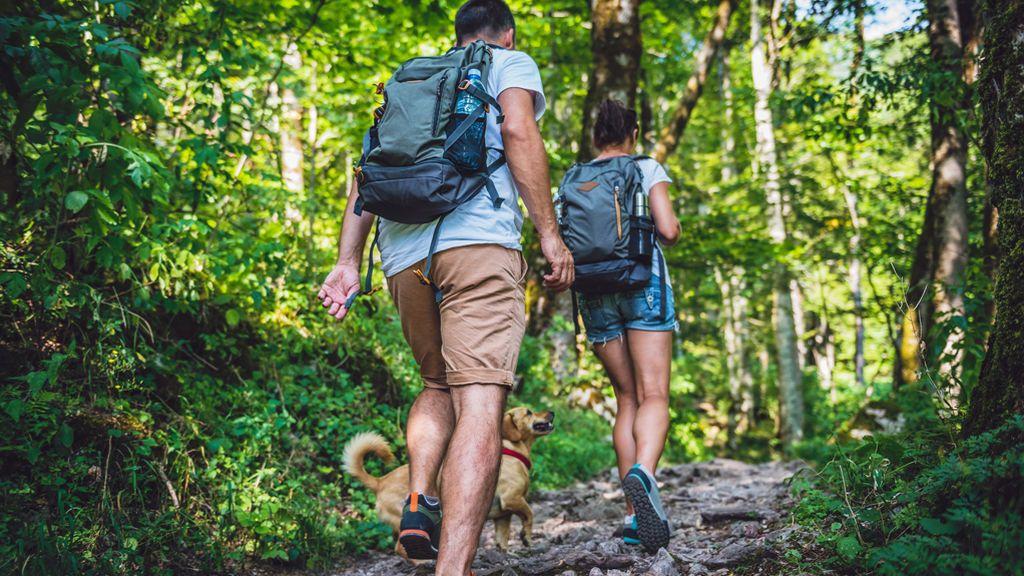 Las mejores zonas rurales para hacer senderismo en la desescalada
