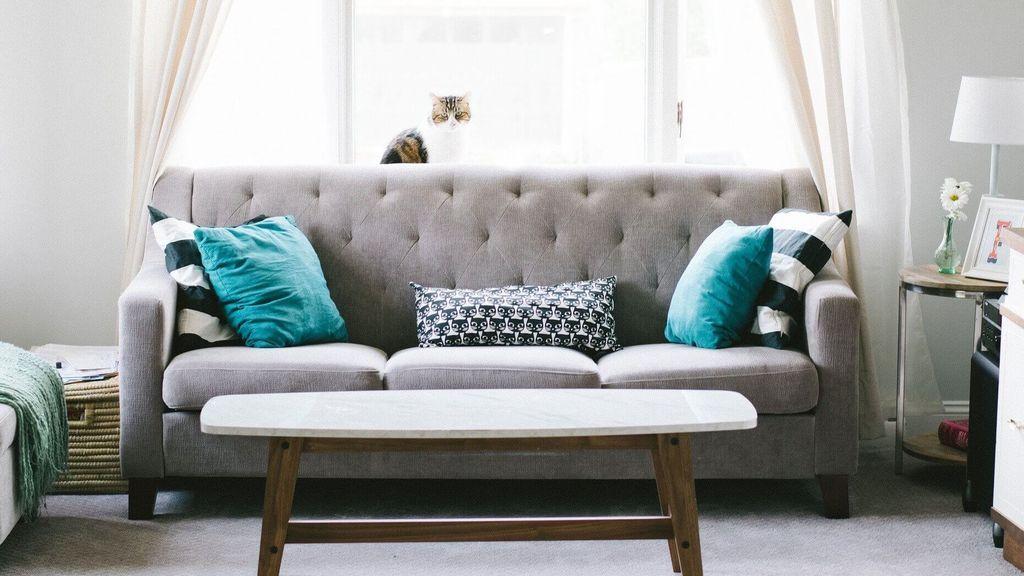 Cómo lograr una limpieza completa de los sofás