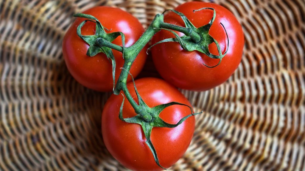 Tomate. Image by Mabel Amber from Pixabay