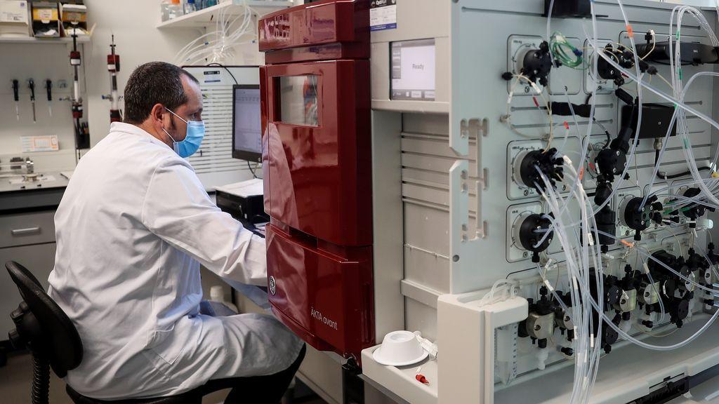 Investigan en Holanda una vacuna aragonesa contra la tubercolosis que podría proteger contra el coronavirus