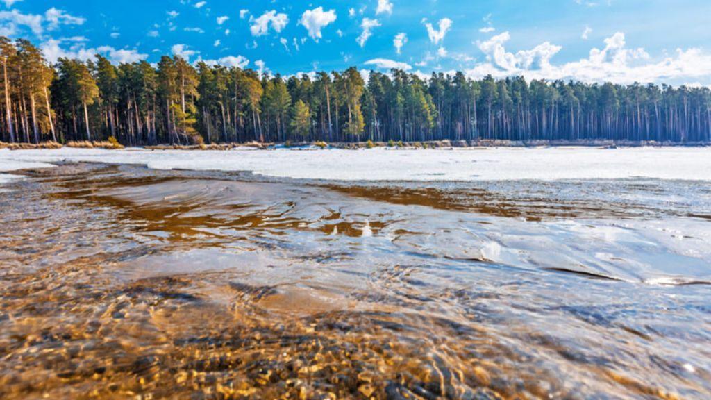 Siberia eleva su temperatura 10 grados de media y el mundo vive su mayo más caluroso