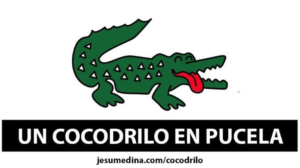 El misterioso cocodrilo de Valladolid ya tiene una línea de camisetas y una canción