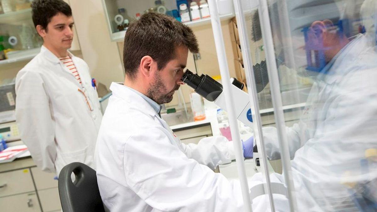 Dos hospitales españoles investigan la respuesta inmunitaria a la COVID-19: cómo acabar con la 'tormenta de citoquinas'