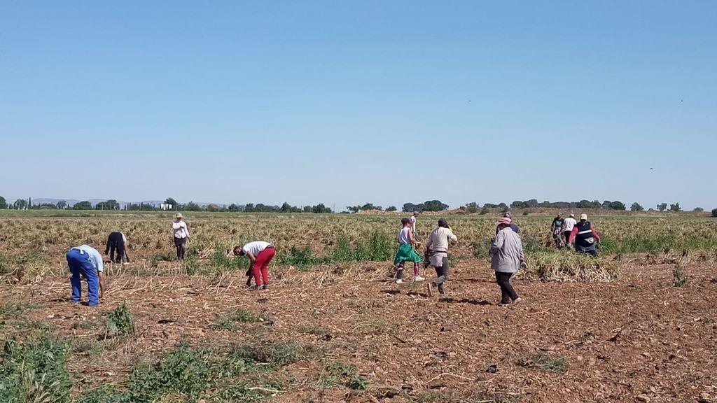 Marruecos iniciará este jueves la repatriación de los marroquíes atrapados en España por la pandemia