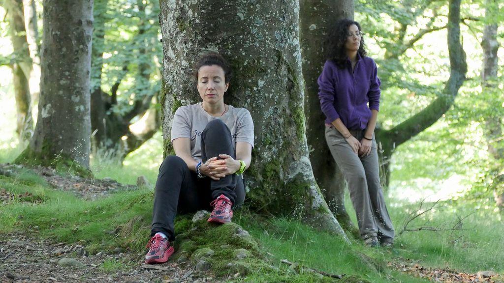 Baños de bosque: árboles que curan emociones y sentidos