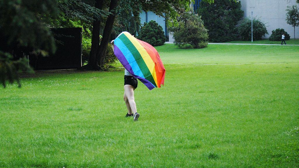 Más que gays y lesbianas: orientaciones e identidades sexuales dentro de la comunidad LGTB+