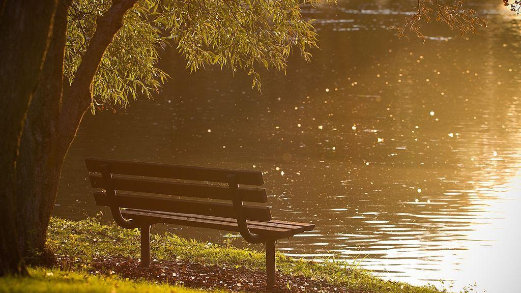 Un jubilado pierde su libro electrónico en el parque y más de 100 personas se unen para comprarle otro