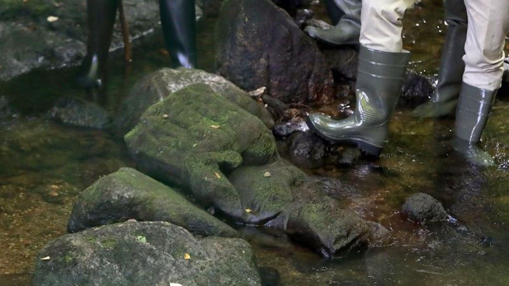 Escultura encontrada en el río