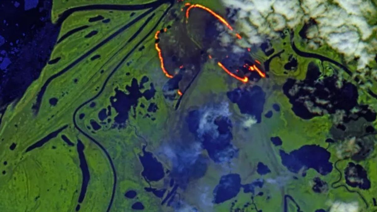 Los incendios zombies amenazan  el Ártico