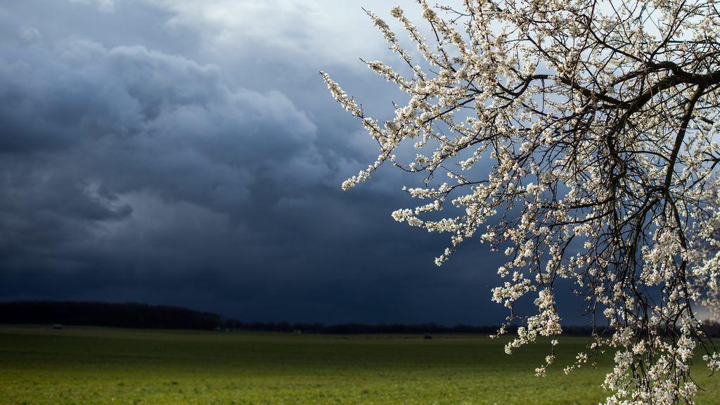 Vaguada en el norte y borrasca frente a Canarias: últimas tormentas de la primavera muy repartidas