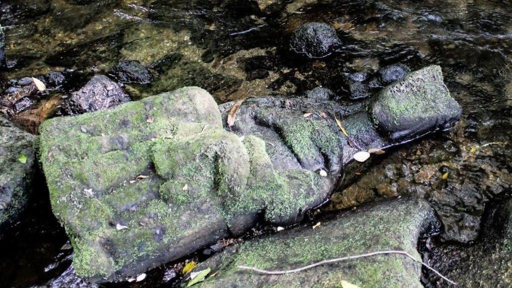 Hallazgo de una virgen de piedra en un río