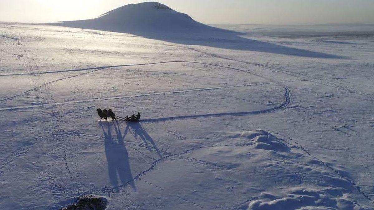 La ola de calor en Siberia con temperaturas de récord dispara todas las alarmas climáticas