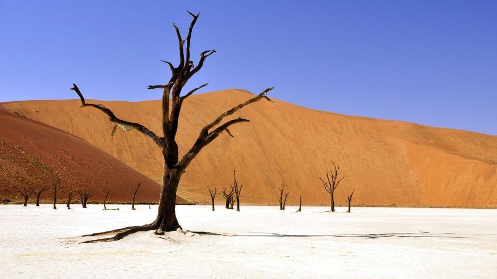 Hoy, Día Mundial de Lucha contra la Desertificación y la Sequía, los rostros de Mediaset se unen a Finish para concienciar sobre el consumo del agua