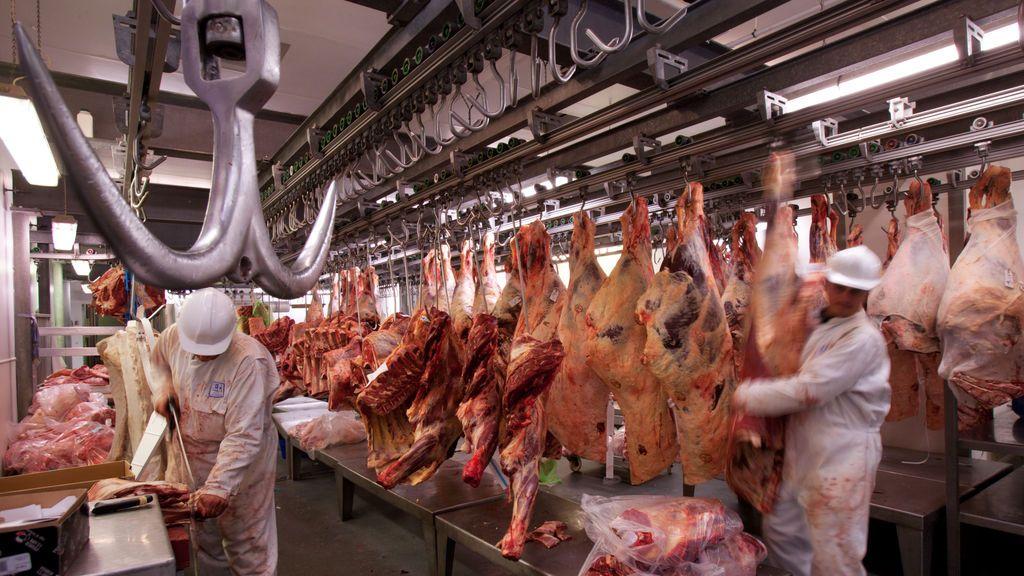 Los rebrotes en mataderos sacan a relucir la precariedad laboral