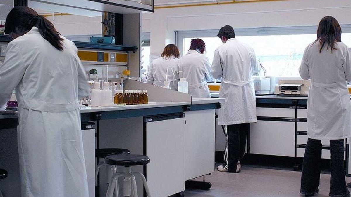 Miles de investigadores precarios se irán a la calle por la covid-19, según CSIF