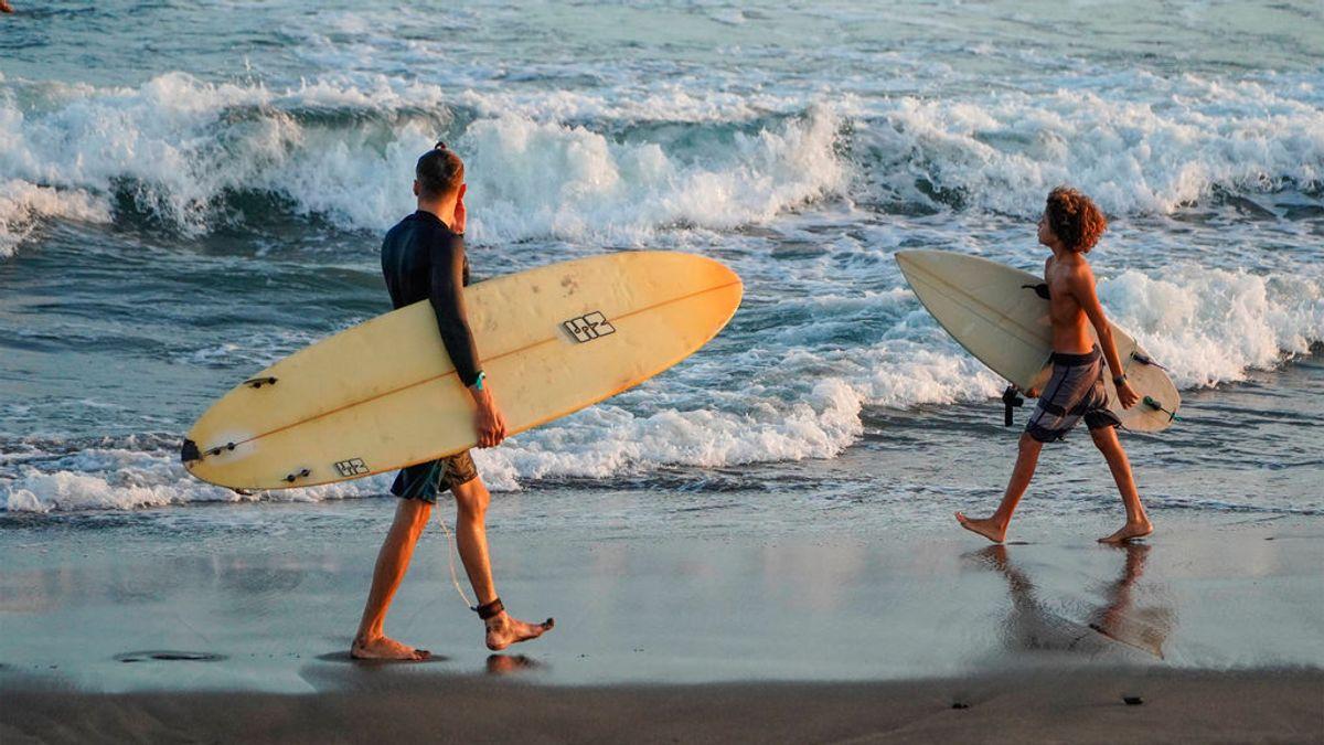Tipos de tablas de surf: cómo elegir la mejor tabla