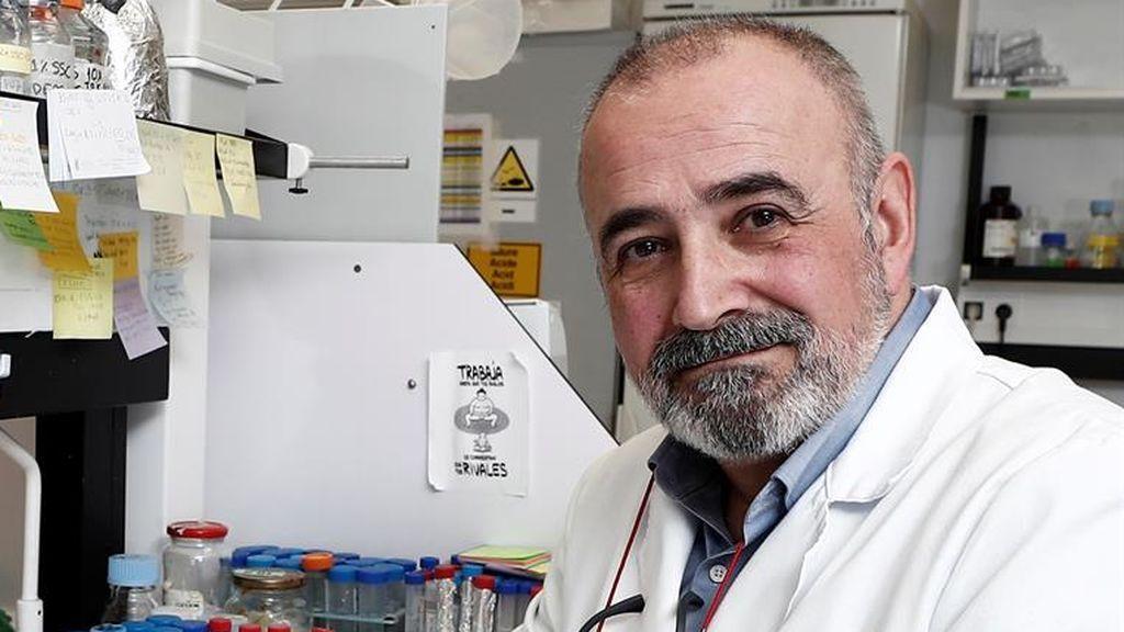 """Ignacio López-Goñi , microbiólogo: """"Puede hacer olas recurrentes más o menos intensas durante un par de años"""""""