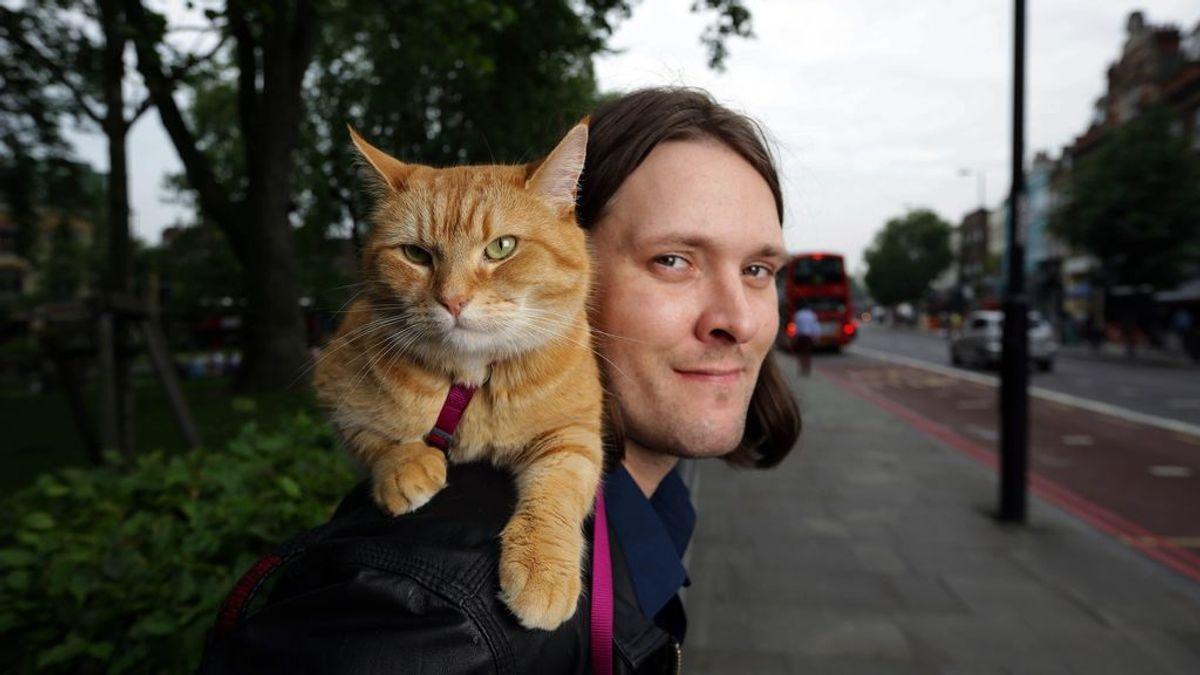 James Bowen y su gato Bob