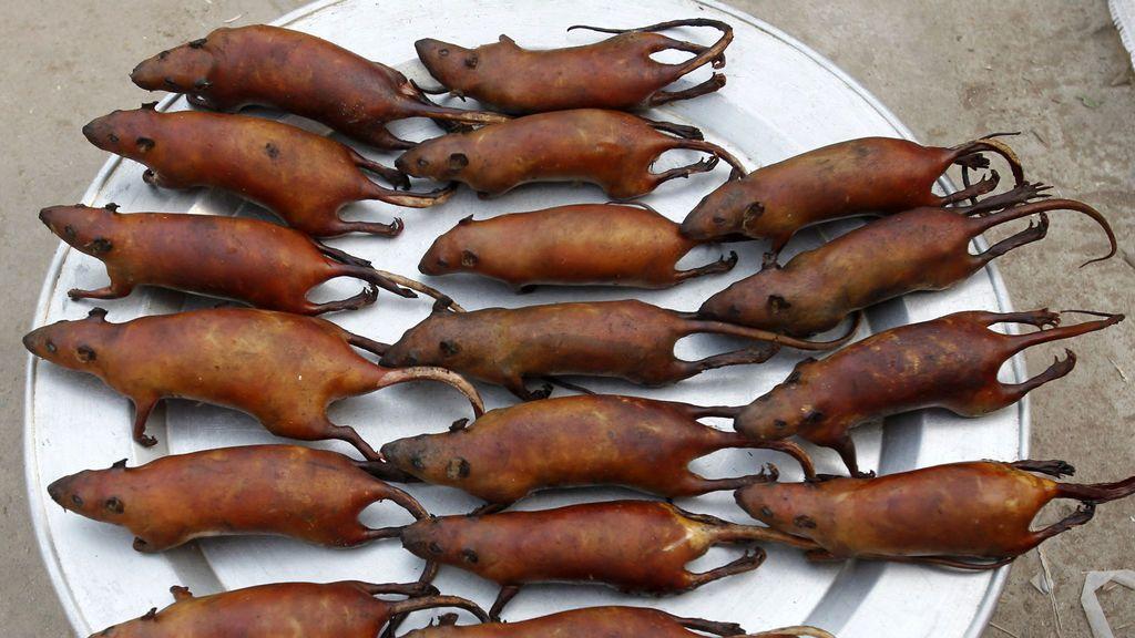 Ratas cocinadas