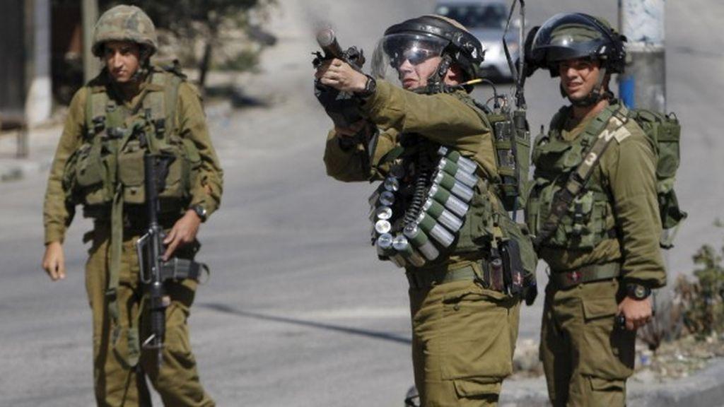 Denuncian el uso de animales en pruebas de armamento secretas del Ejército israelí
