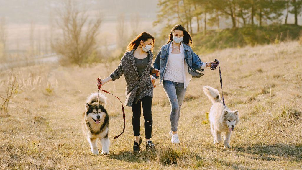Dos amigas paseando a sus perros con mascarillas