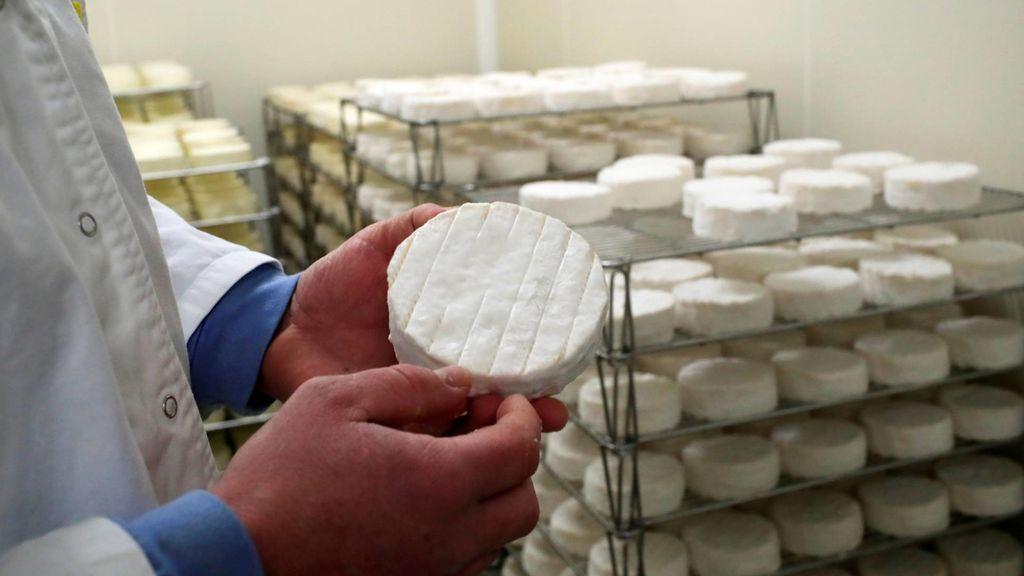 Cómo disfrutar del queso durante más tiempo: trucos para que no pierda sus nutrientes