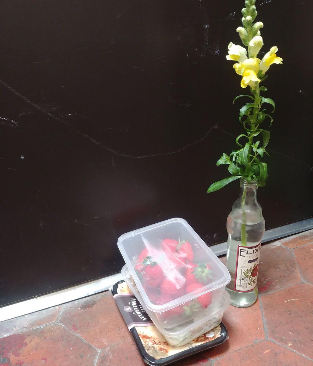 Flores3