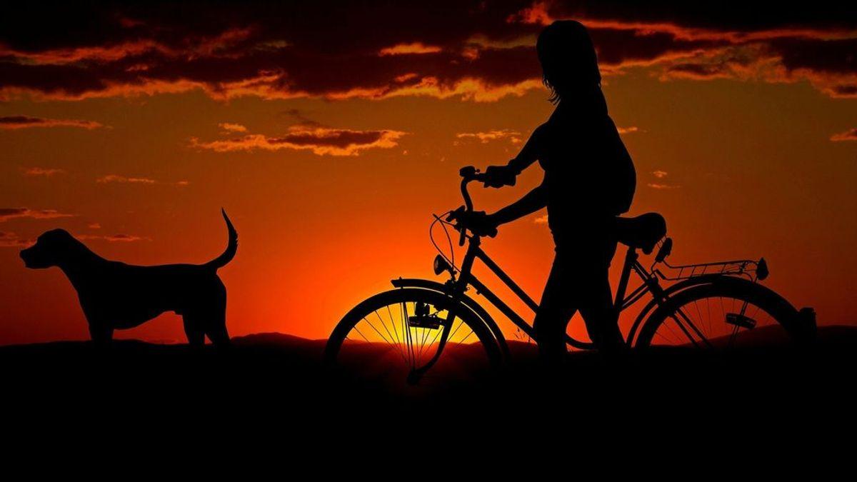Bikejoring: una modalidad del mushing, en la que el trineo se sustituye por la bicicleta, que no para de ganar adeptos