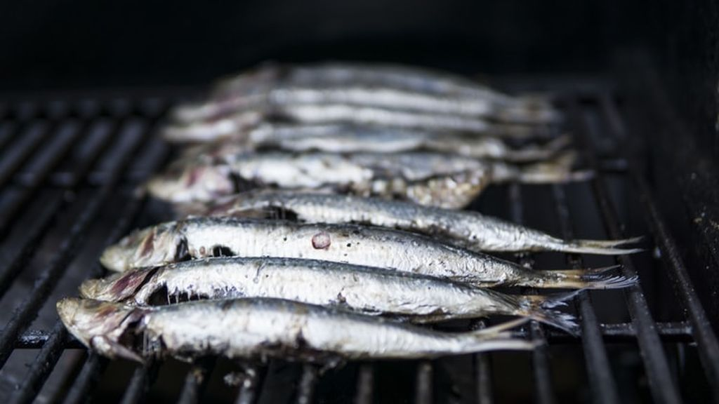 Encuentran plástico dentro de los peces más consumidos del Mediterráneo