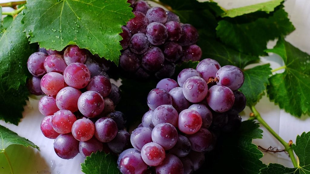 grape-fruits-708777
