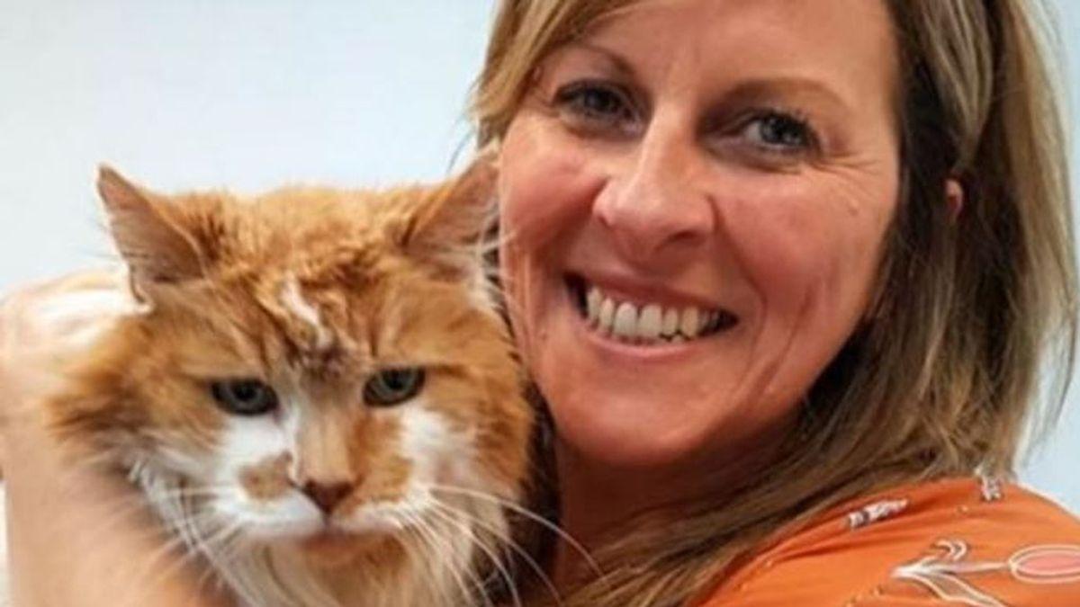 Muere Rubbles, el gato más viejo del mundo, a los 31 años de edad
