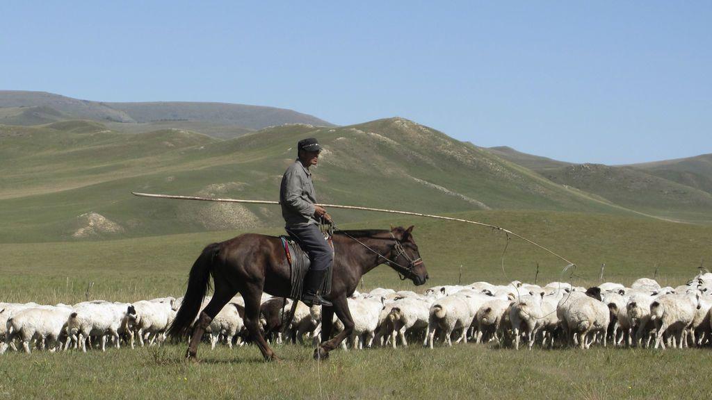 China eleva en nivel de alerta por un caso de peste bubónica tras los dos registrados en Mongolia