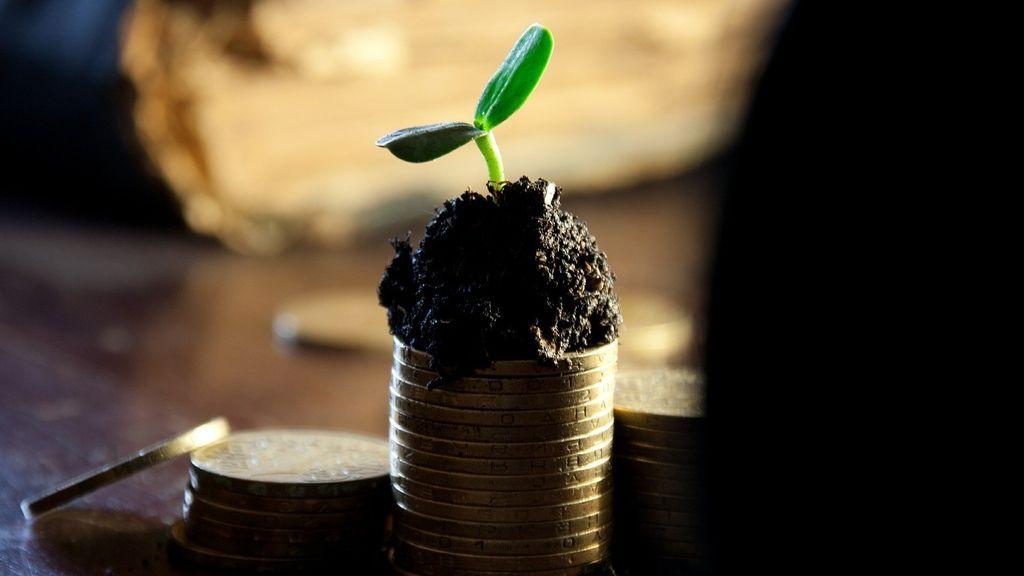 Qué son los fondos indexado: cómo funcionan y qué ventajes pueden suponer