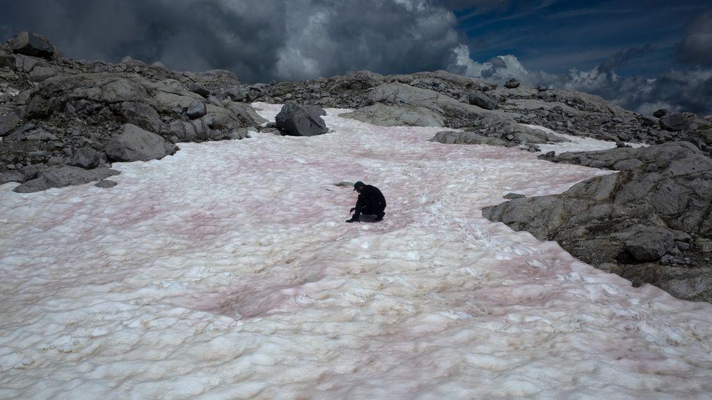 Los Alpes italianos se tiñen de rosa: el secreto del cambio de color de la nieve