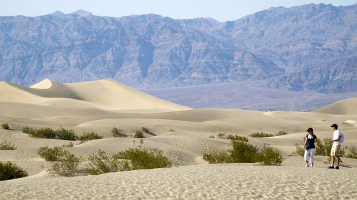 Las algas del desierto que sobreviven a una sequía prolongada con solo una gota de agua