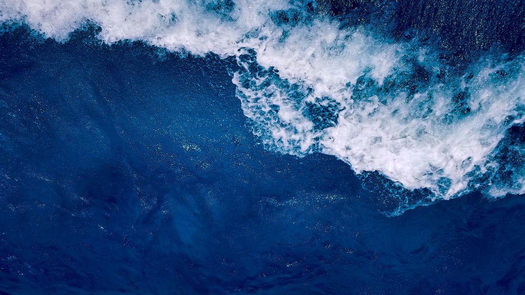 Las aguas de La Gomera están llenas de vida: la iniciativa Water Lovers pone el foco en su conservación para garantizar un futuro azul