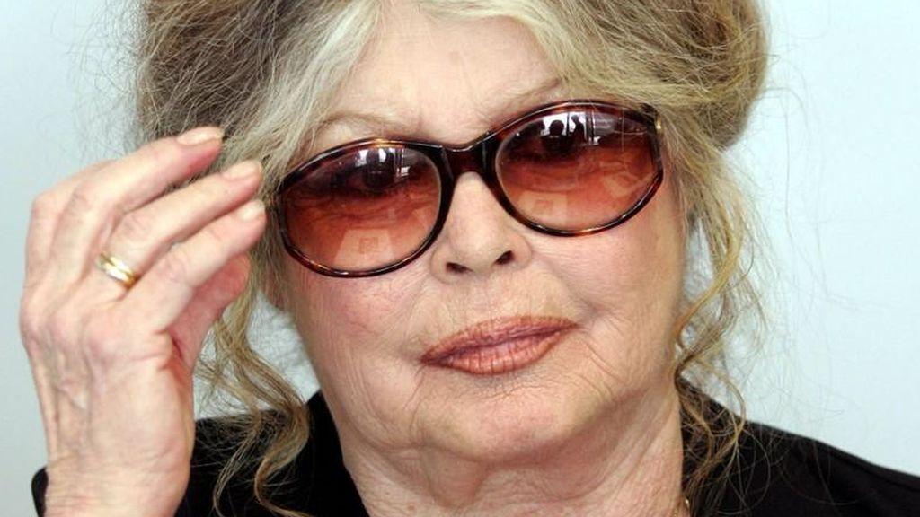 """Brigitte Bardot, furiosa con el Gobierno francés: """"Son unos cobardes sin pelotas"""""""