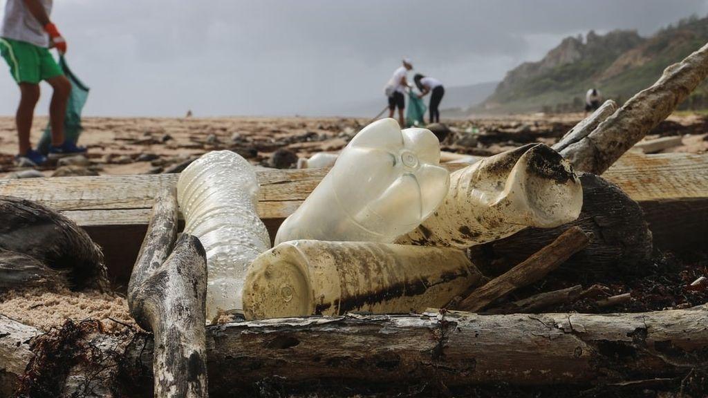 En el programa Water Lovers apuestan por acciones como la limpieza de las playas