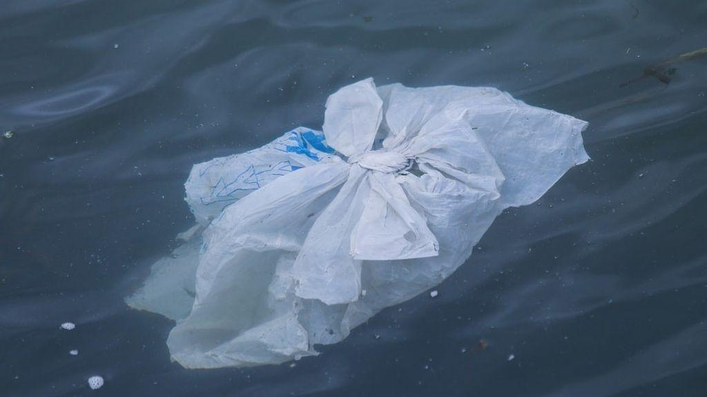 Los plásticos amenazan el futuro de nuestro pulmón azul